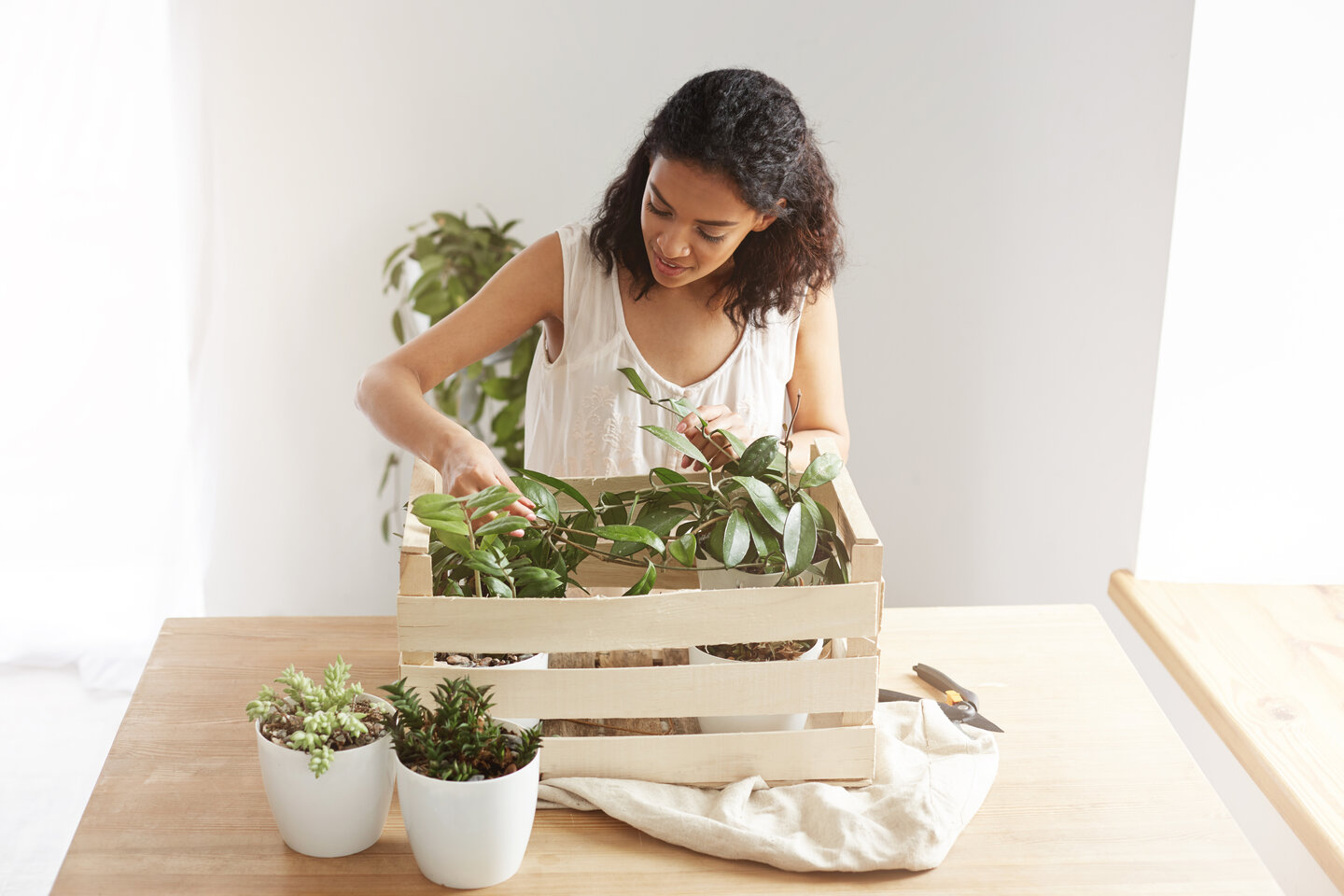 woman bought a lot of plants for her home