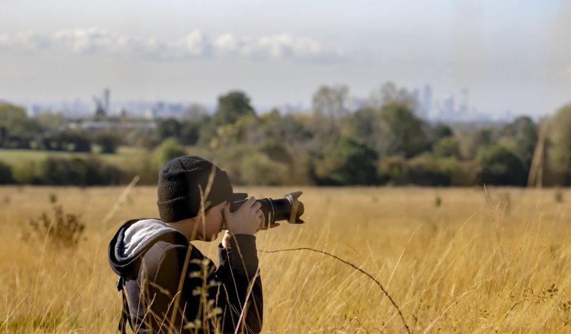 Wildlife Photographer Skills